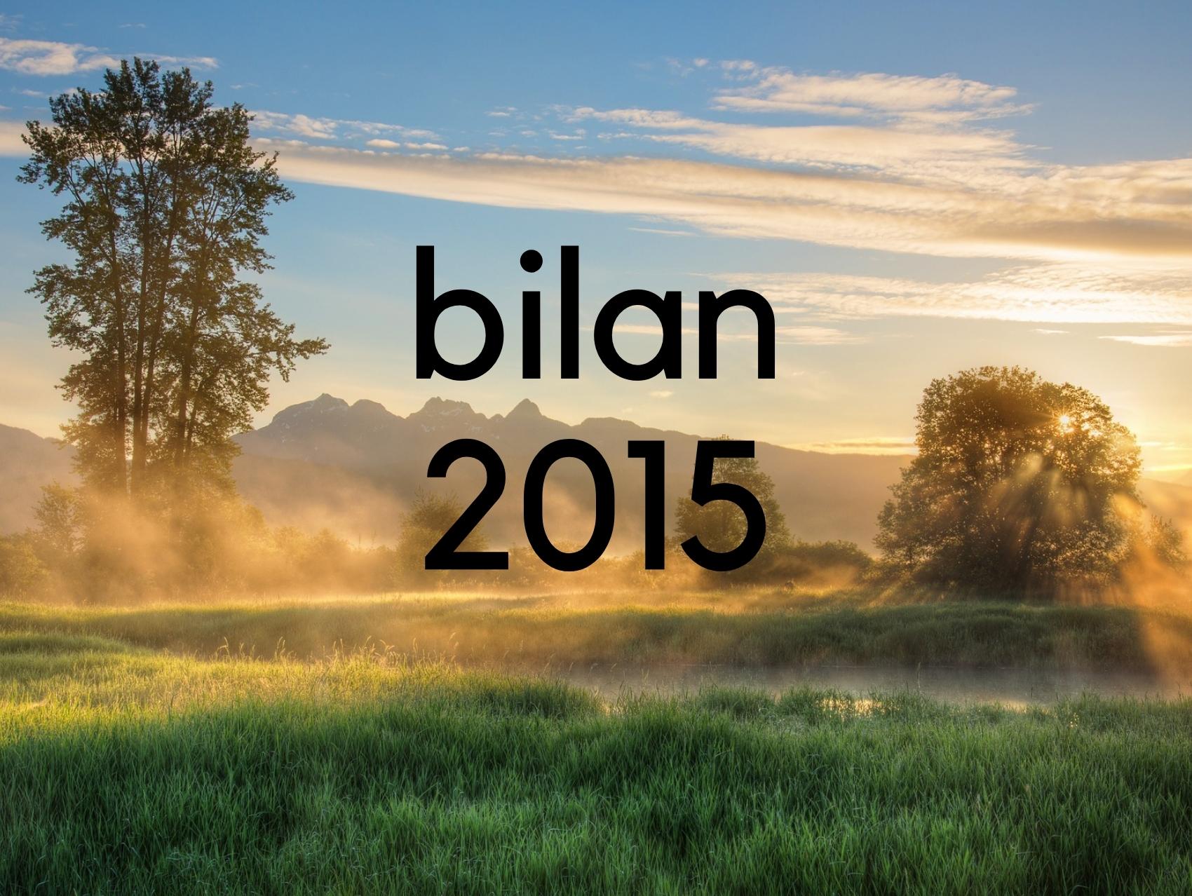 Le temps du bilan - 2015