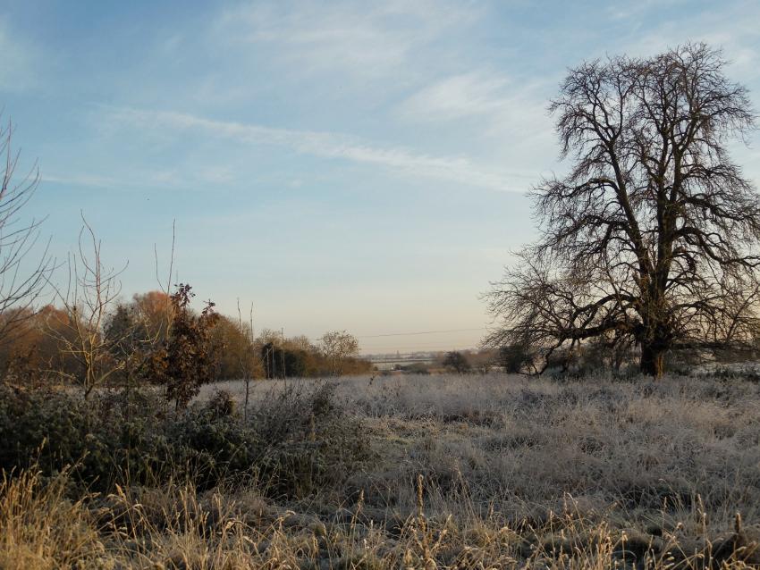 Un matin givré dans la campagne anglaise