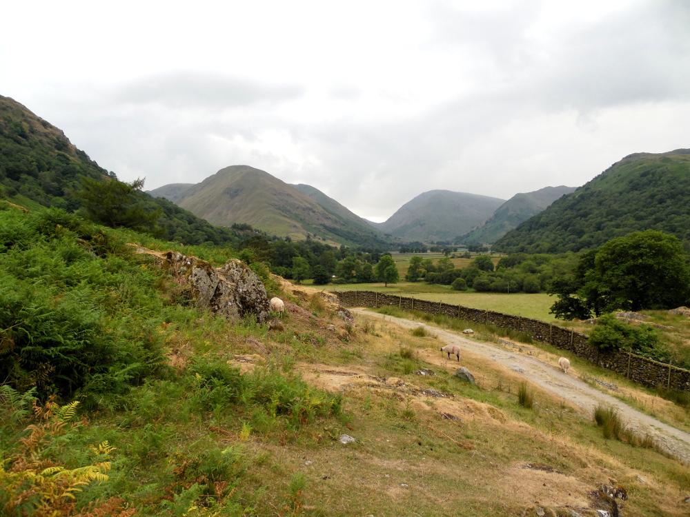 Chroniques anglaises #50 : randonnée improvisée