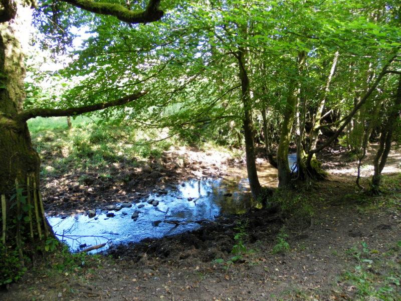 Randonnée dans les Moors : de Hutton-le-Hole à Lastingham