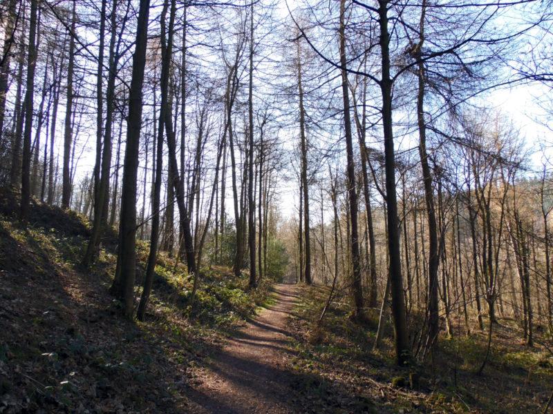 Sutton Bank National Park