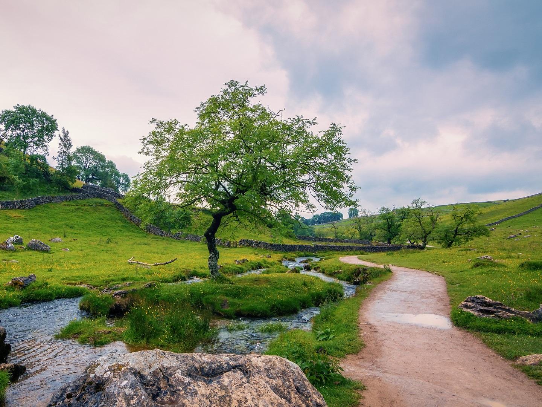 Petit guide du dialecte du Yorkshire (vu par une Française)
