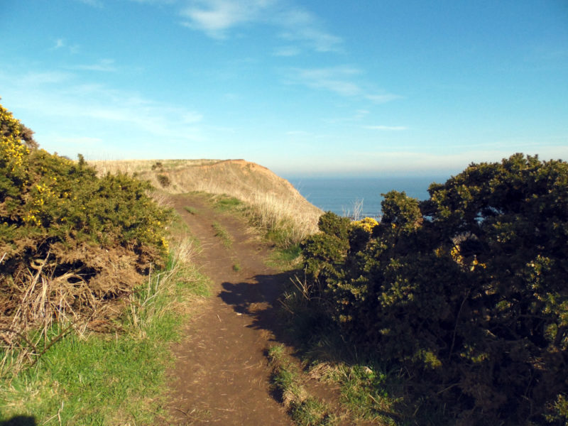 Cleveland Way : randonnée à Scarborough