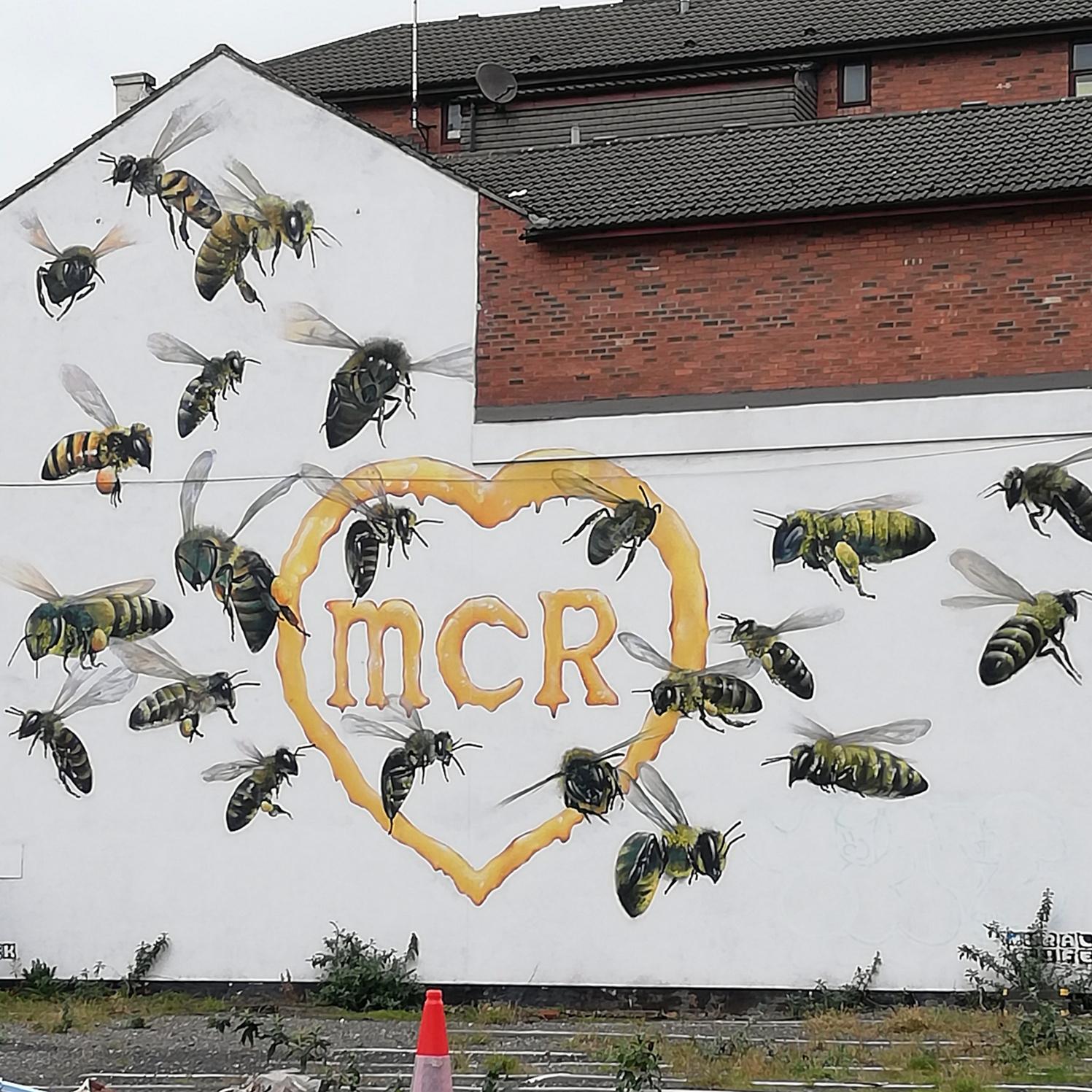 Suivez les abeilles !