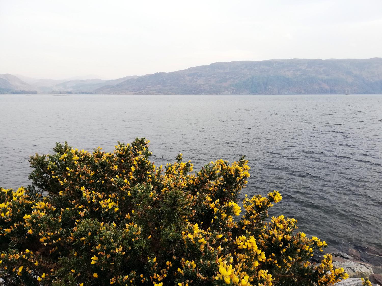 Lochcarron, Highlands d'Ecosse