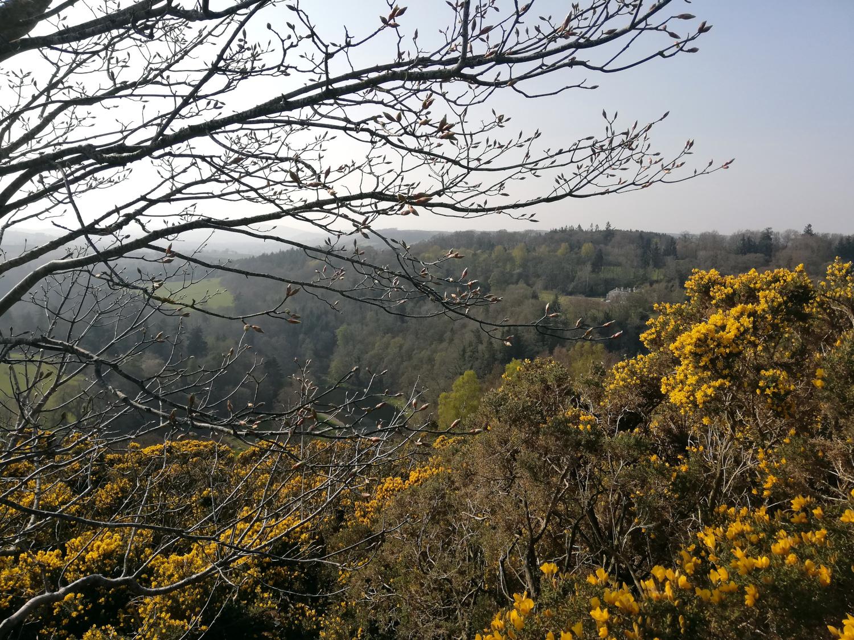 Scott's view, Scottish Borders