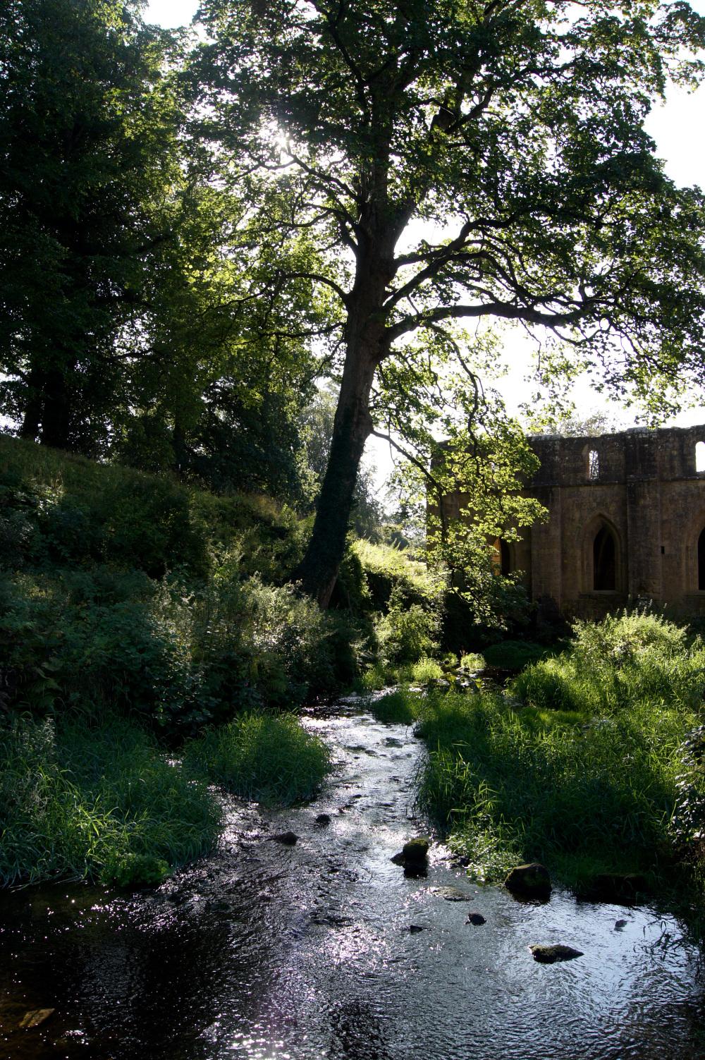 Chroniques anglaises #74 : nouveau projet & journée du patrimoine