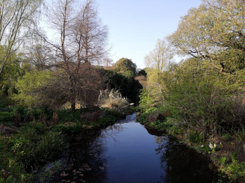 Les jardins botaniques d'Edimbourg