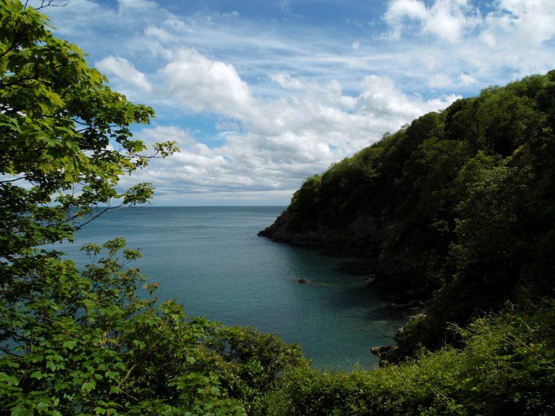 Sugary Cove