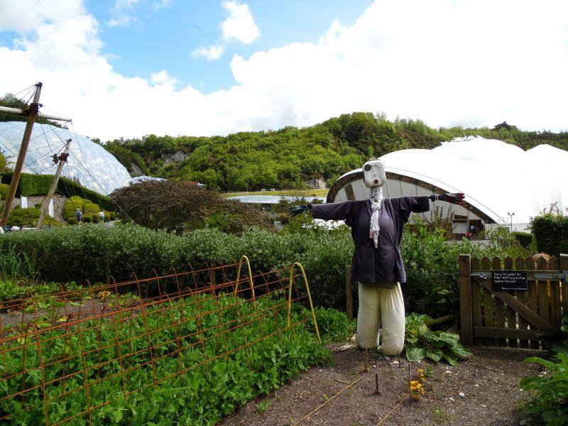 The Eden Project, balade en extérieur