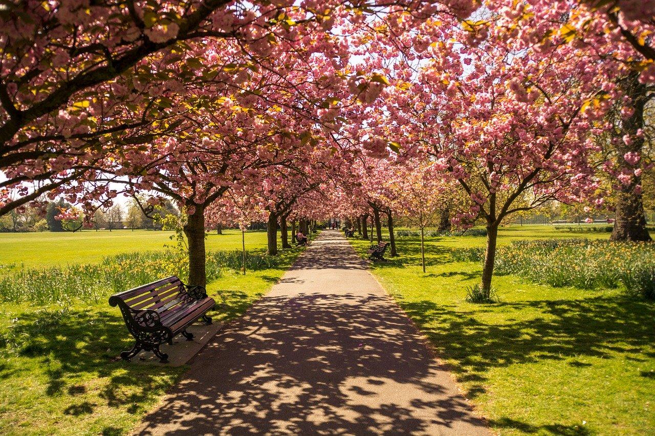 Errer à Hyde Park, Londres