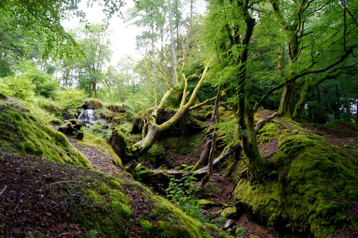 Les chutes de Bracklinn, Callander