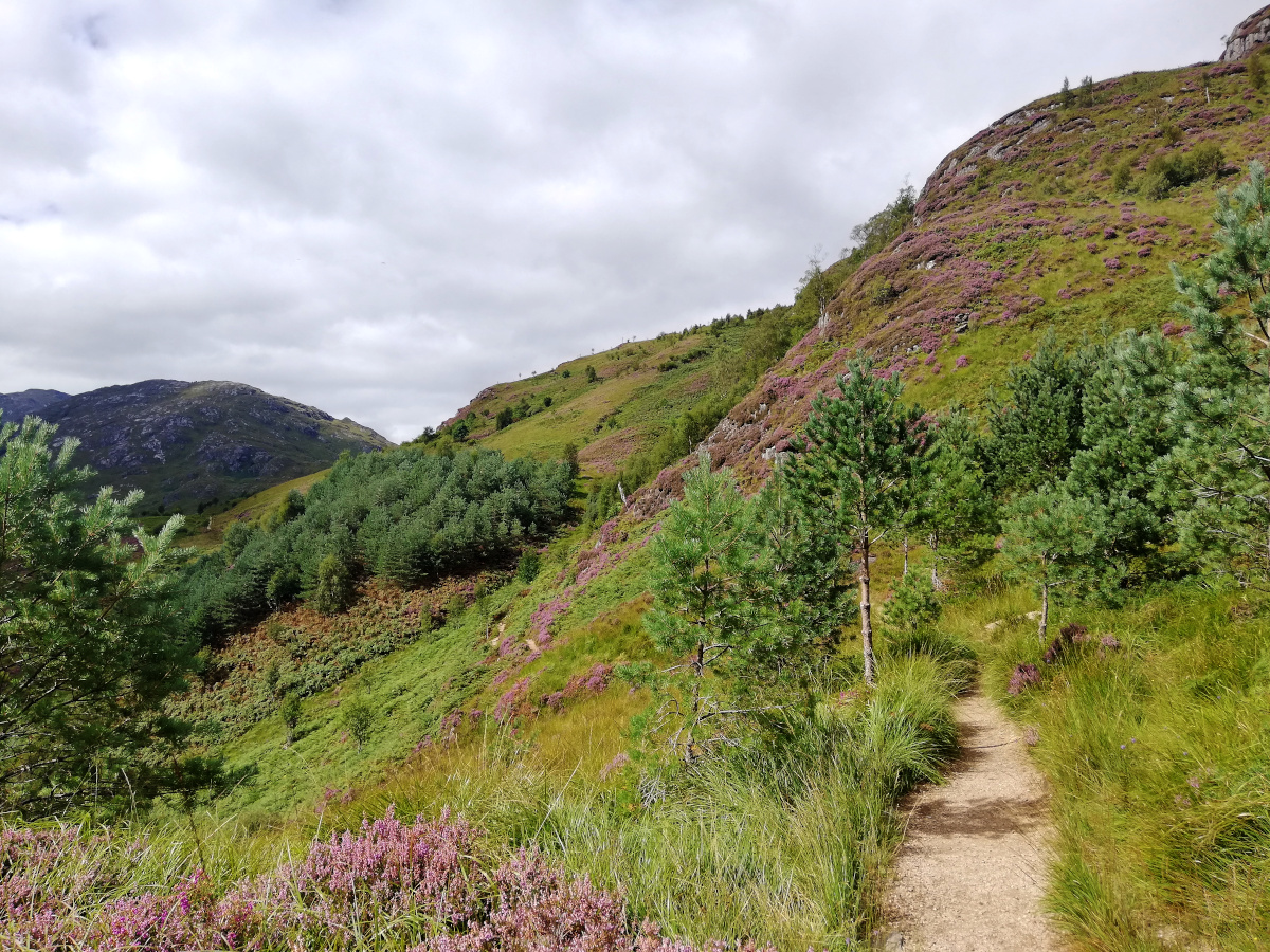 Glenfinnan Viaduct Trail