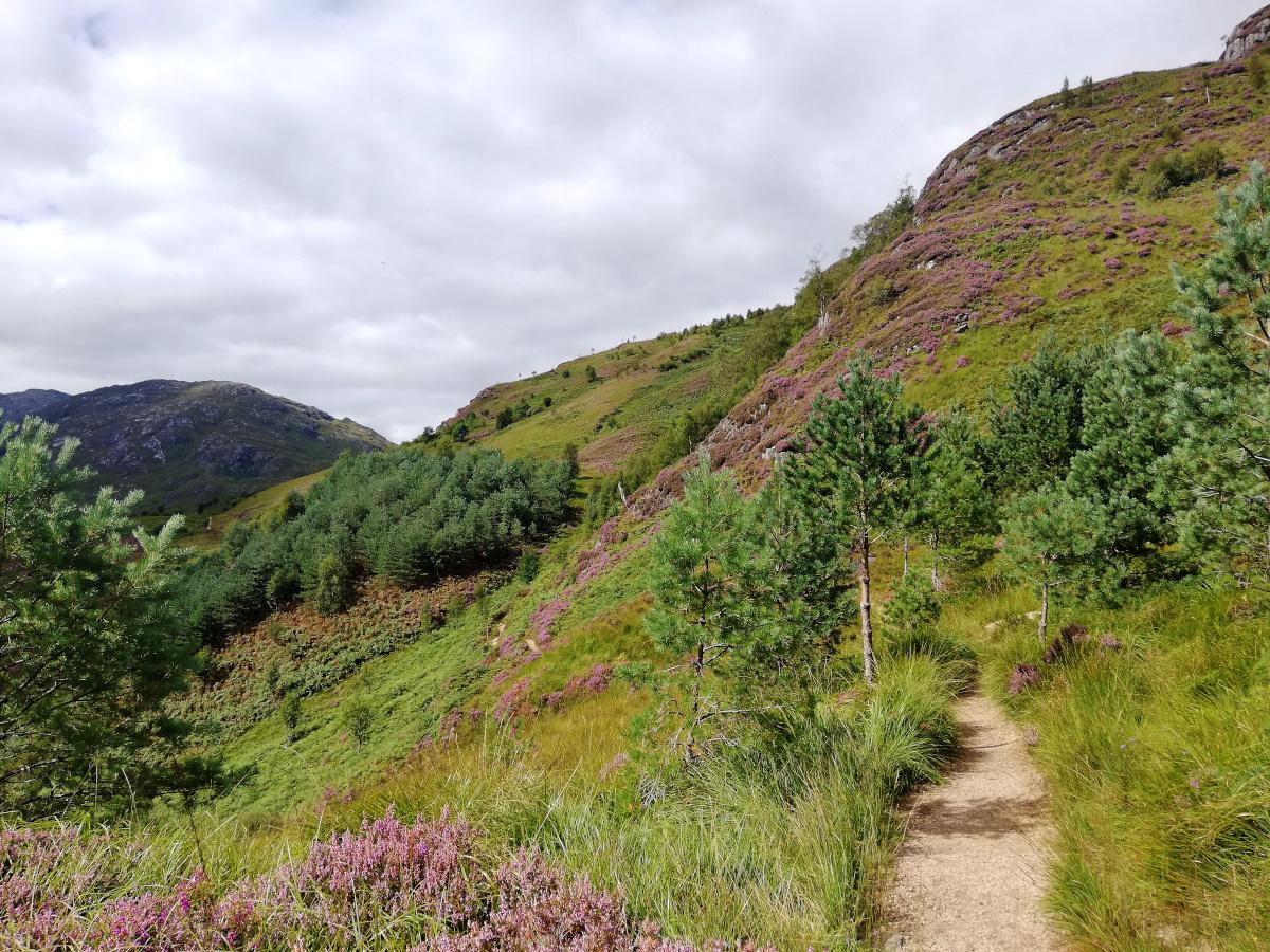 Glenfinnan Viaduct Trail