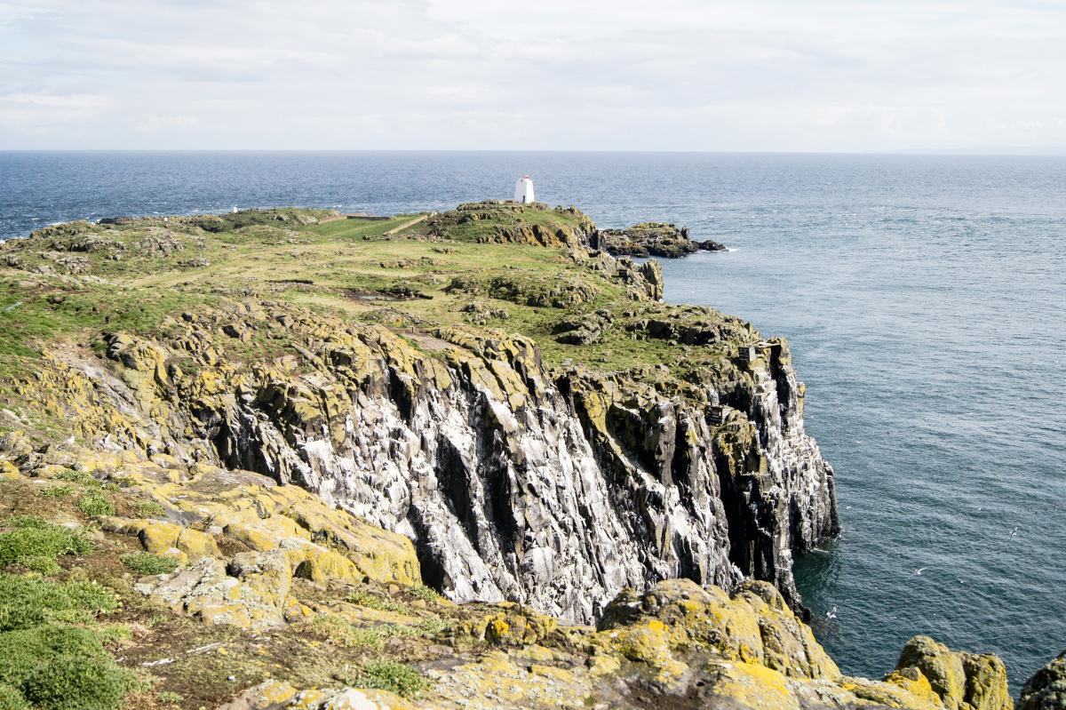 Prendre le large : excursion sur l'Île de May à la recherche de macareux