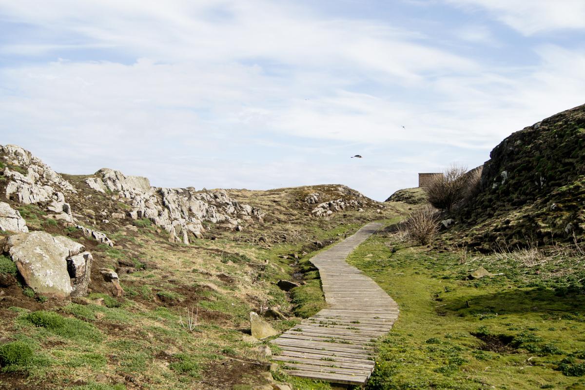 Suivre les sentiers sur l'Île de May